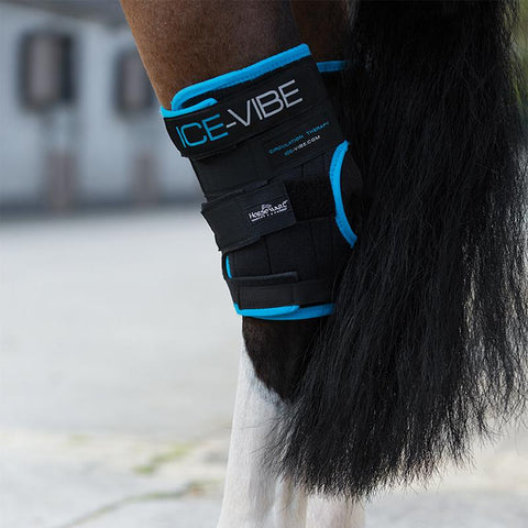 Ice-Vibe Hock Wraps