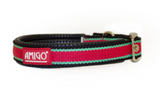 Amigo Dog Collar