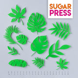 Sugar Press Rainforest