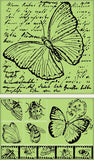 Insect and Nature Soft Stamps