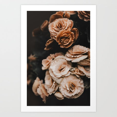Framed Art | Begonia Flowers