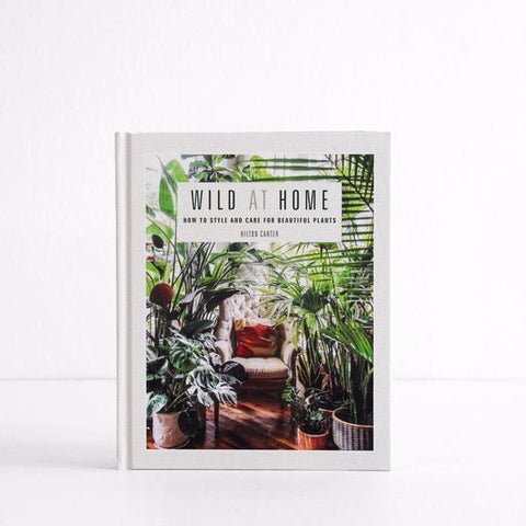 Wild At Home | How To Style + Care For Beautiful Plants | Hilton Carter