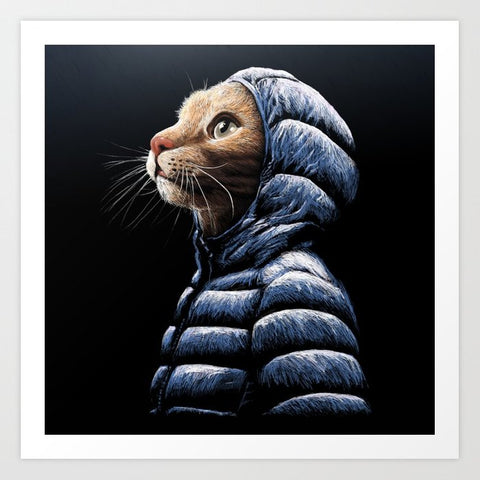 Framed Art | Cool Cat