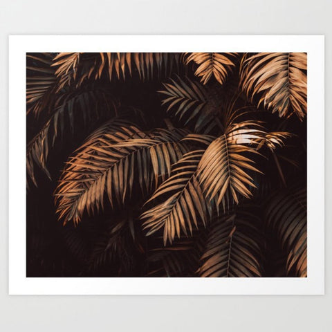 Framed Art | Cinnamon Stick Palms