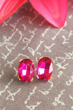 Load image into Gallery viewer, Gorgeous Gems Earrings(Pink)