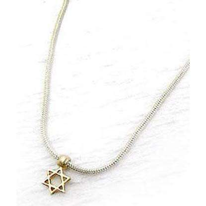 Michael Bromberg Ladies Small Star of David Necklace