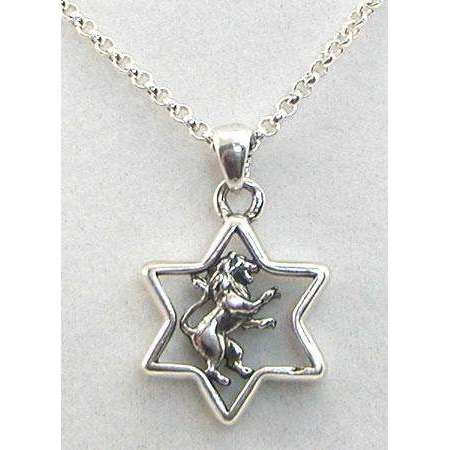 Michael Bromberg Sterling Silver Lion of Judah in Star of David Necklace