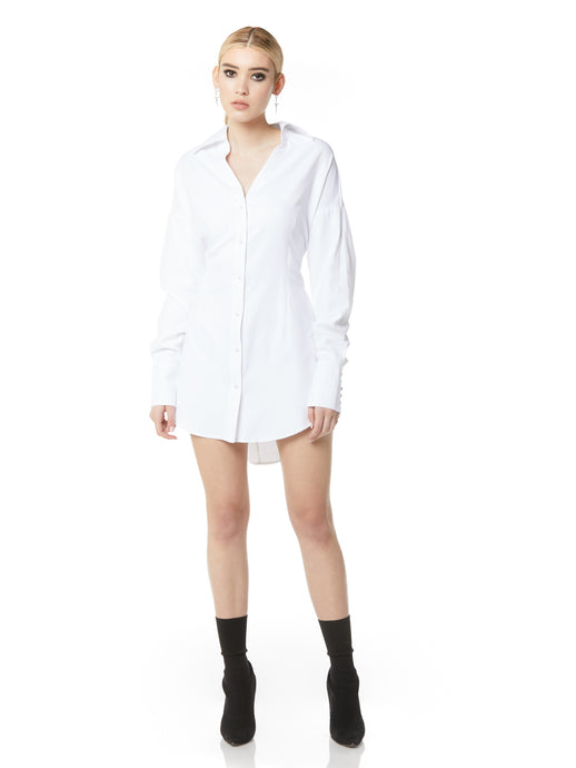Darted Boyfriend Shirt Dress