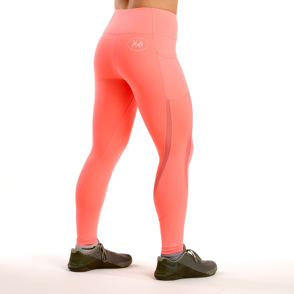Halo Coral Mesh Leggings