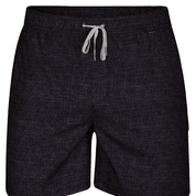 "Shorts - Hurley Heather Volley 17"" Black"