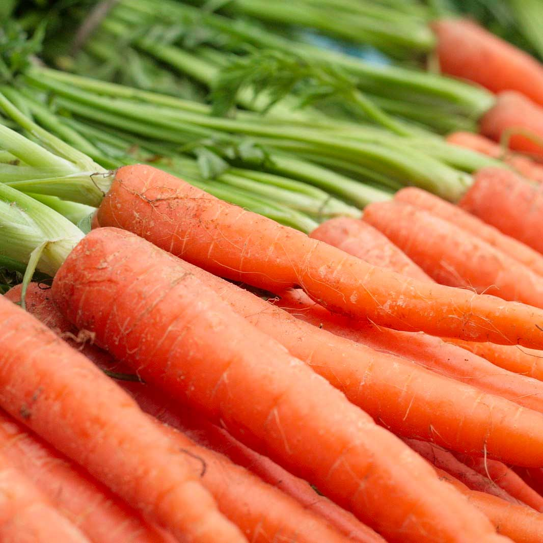 How to cook carrots using an Aga range cooker