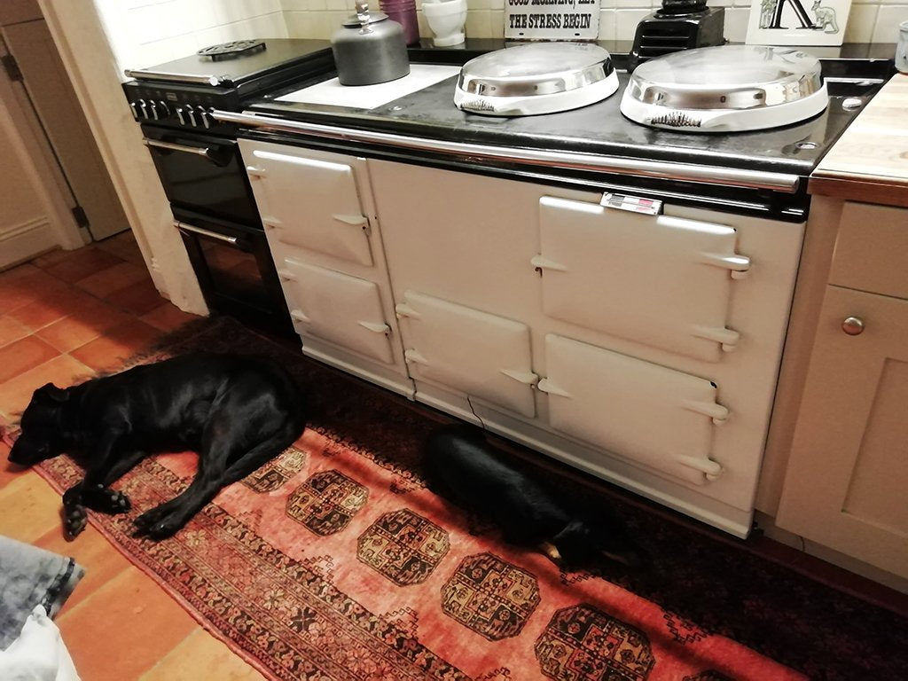 Katy Loves Her Aga Range Cooker ( Even More Now)