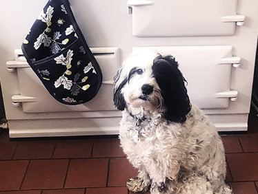 Thank You Maria! Matching Cockapoo & Cooker!