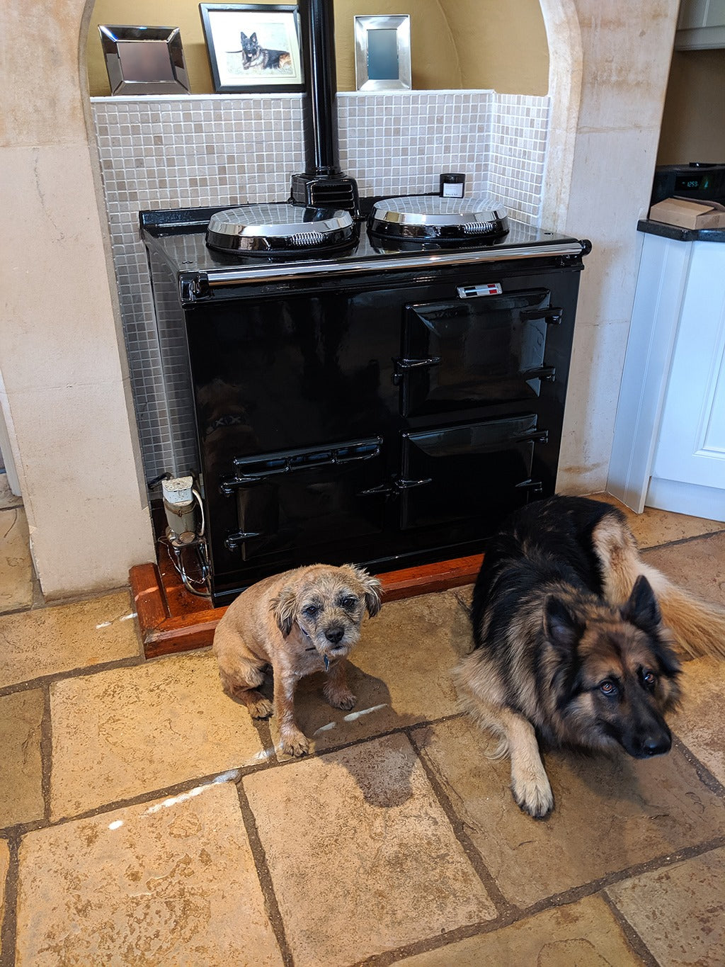 Black Aga range cooker in kitchen with two dogs lying in front
