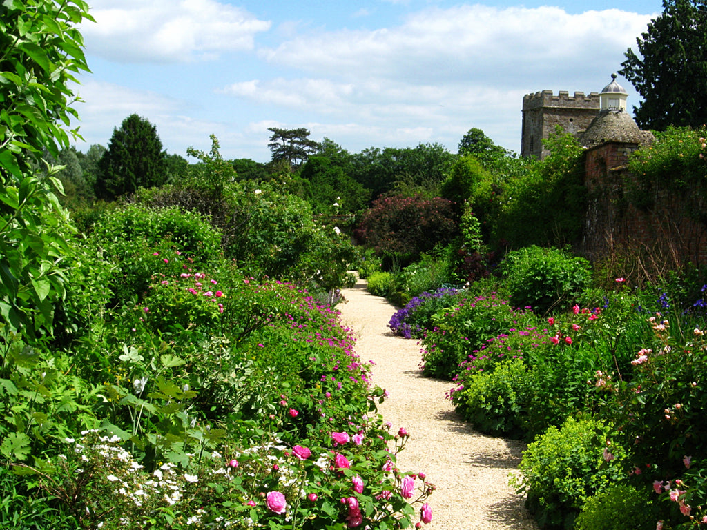 A Pathway through the gardens in an Oxfordshire Stately Home