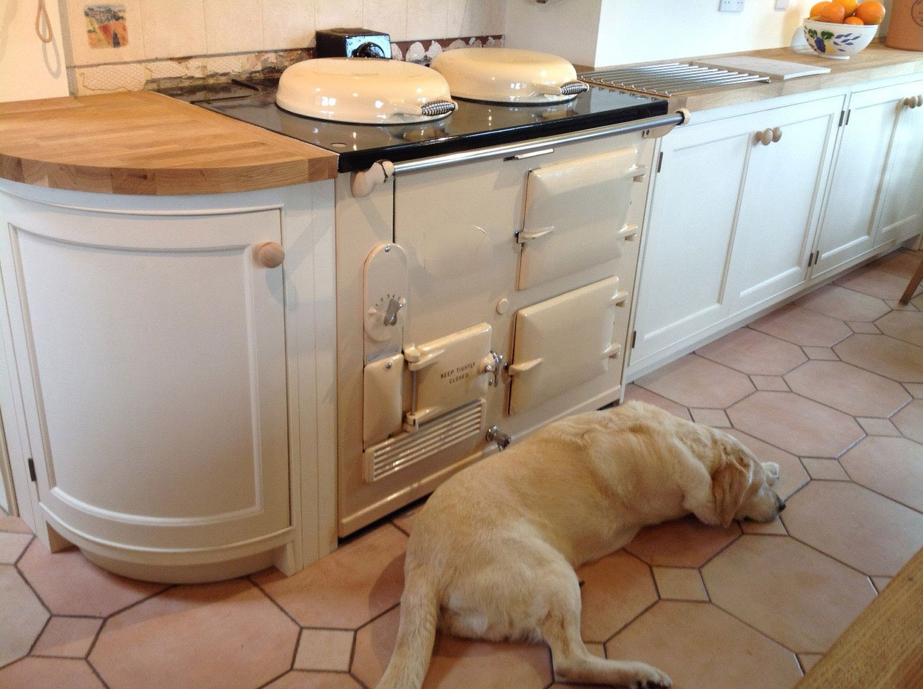 Cream Aga range cooker with golden labrador