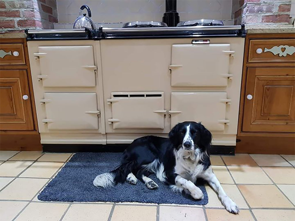 Collie dog infront of an Aga range cooker