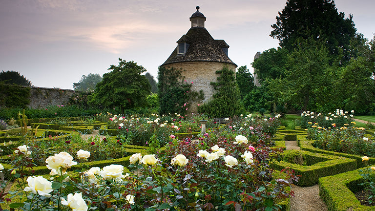 A Rose garden at an Oxfordshire Stately home