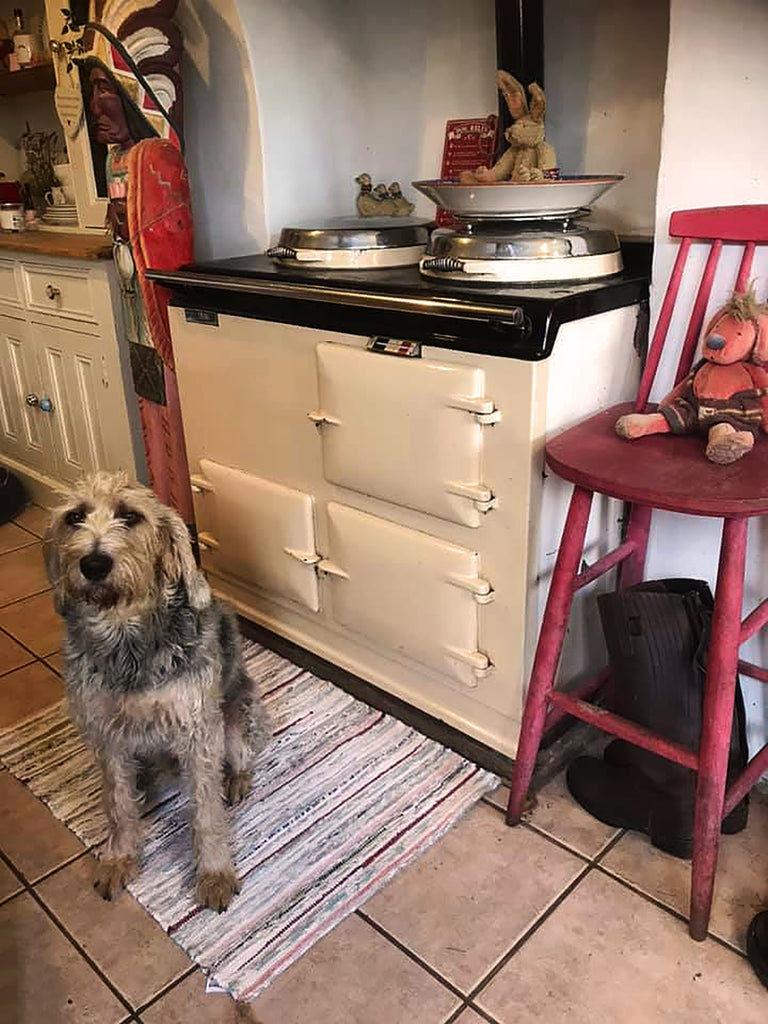 Dog in front of an aga range cooker in a Farmhouse kitchen