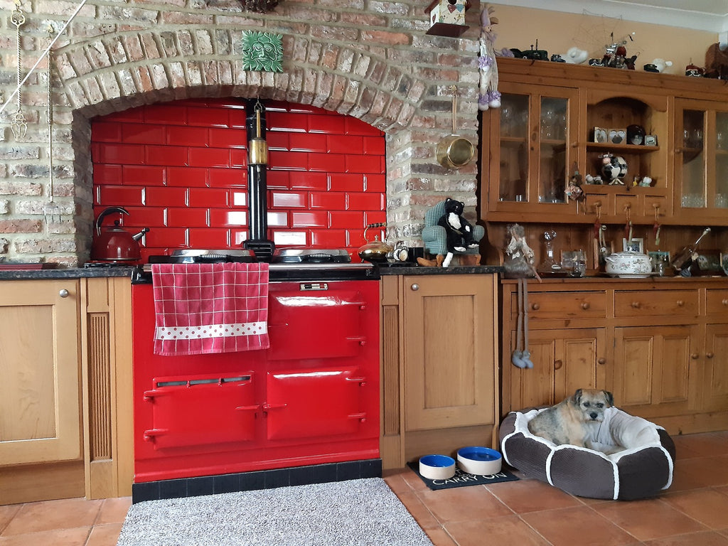 a pillar box red Aga range cooker and a terrier pup