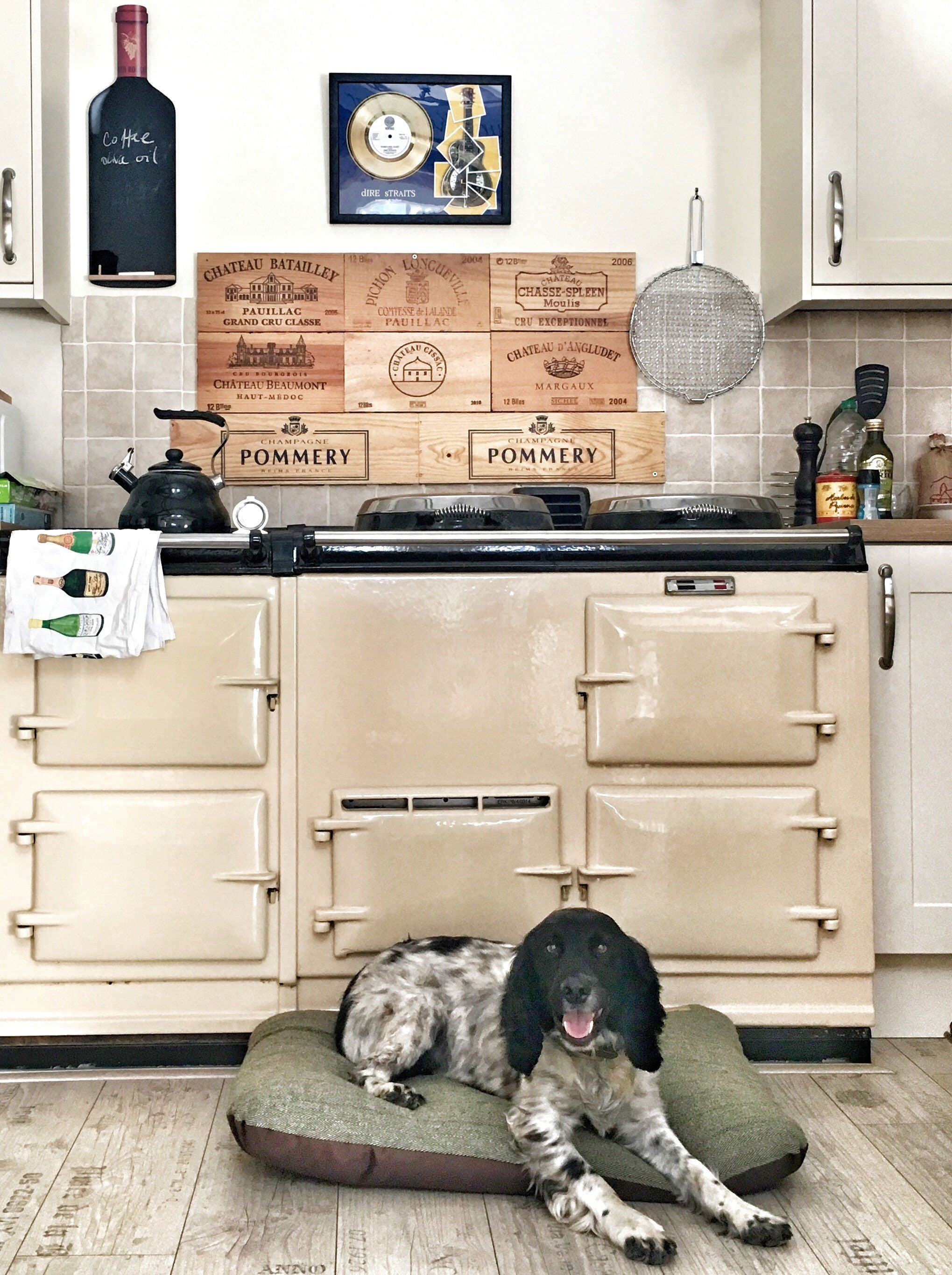 Aga range cooker, toaster and dog!