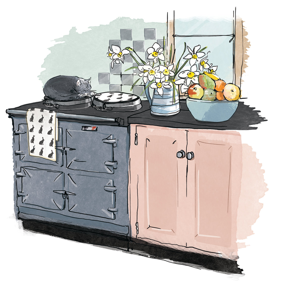Information & guides related to Aga range cookers