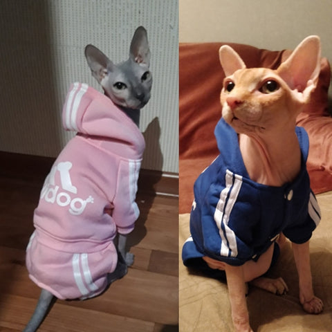 For Cats Sphinx Katten Clothing Outfit Ropa Para gatos Kedi Giyim Pets Products Cute Cat Sweater Hoodie Winter Warm Pet Clothes