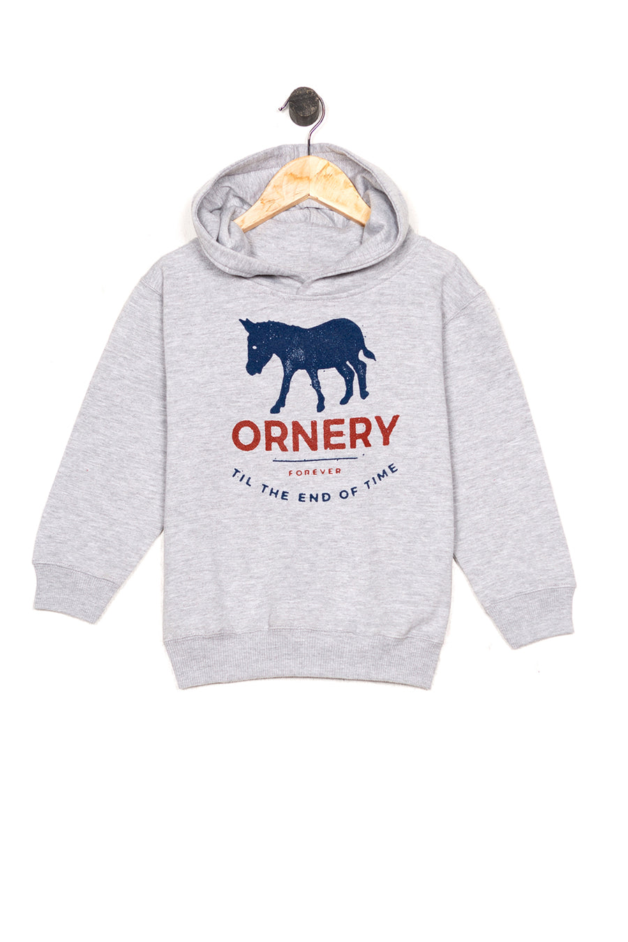 ornery kids hoodie, final sale