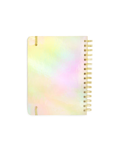Ban.do 2019 Medium Planner Diary - Gold - Neapolitan Homewares