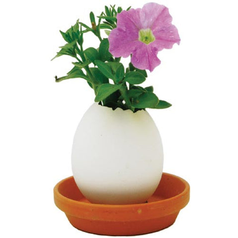 Eggling Miniature Grow Kit - Eggling Petunia
