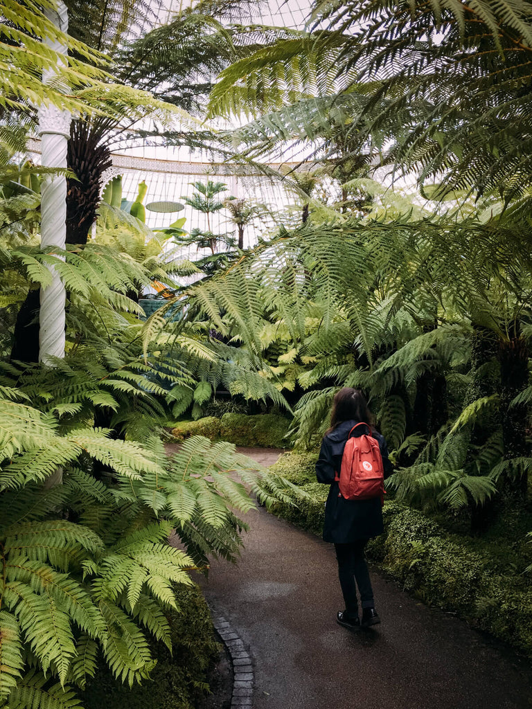 iPhone 6s - Jardin botanique de Glasgow -Black & Wood