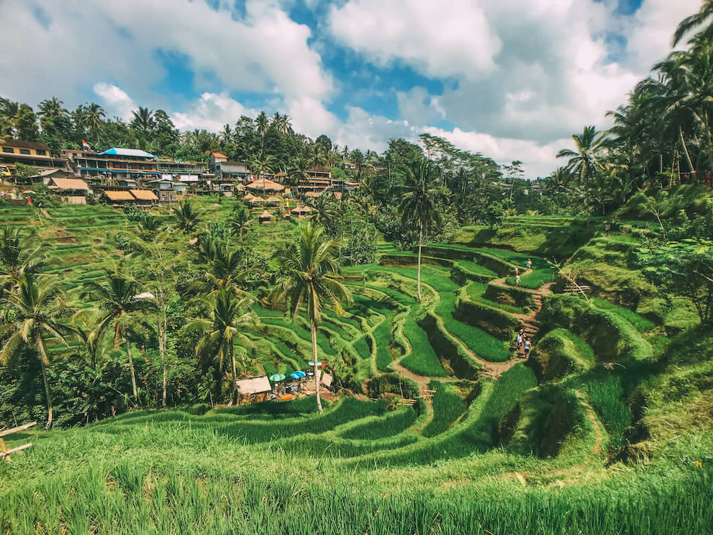 Wide Angle Pro & iPhone 7 - Hand Luggage Only - Bali
