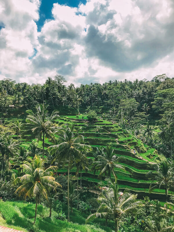 Grand Angle Pro & iPhone 7 - Hand Luggage Only - Bali