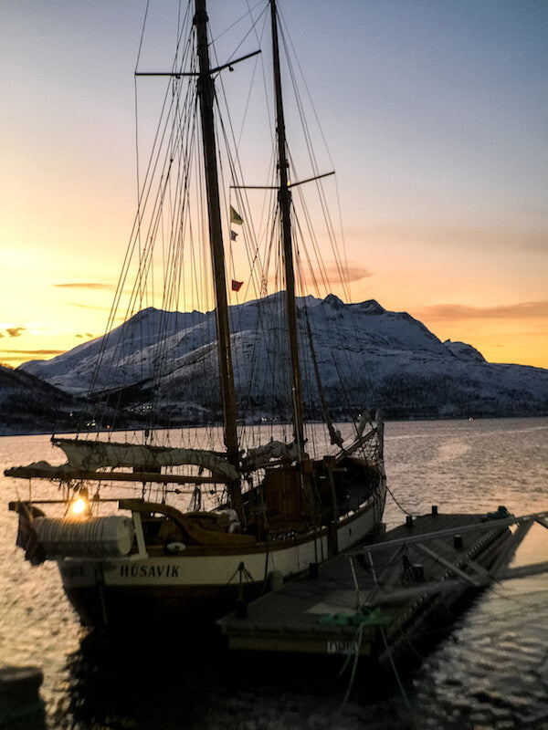 54 - Telephoto - Kinging It - Tromso