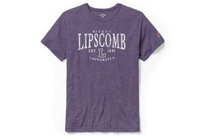 League Men's Victory Falls Tee, Heather Purple