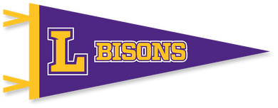 Spirit 6x15 Purple Bisons Pennant