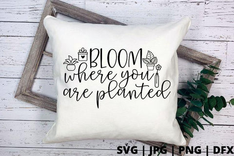 Bloom where you are planted SVG Good Morning Chaos
