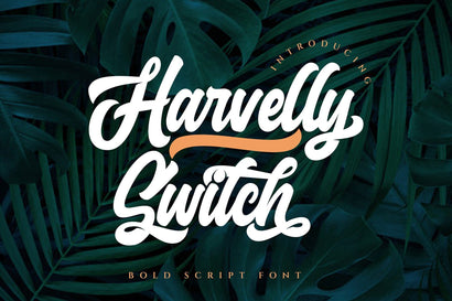 Haverlly Switch - Bold Script Font Font Graphicxell