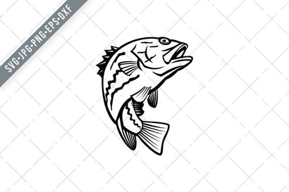 West Australian Dhufish Glaucosoma Hebraicum Westralian Jewfish or West Australian Pearl Perch Jumping Mascot Black and White SVG Patrimonio Designs Limited