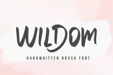 Wildom - Handwritten font Font Vultype Co