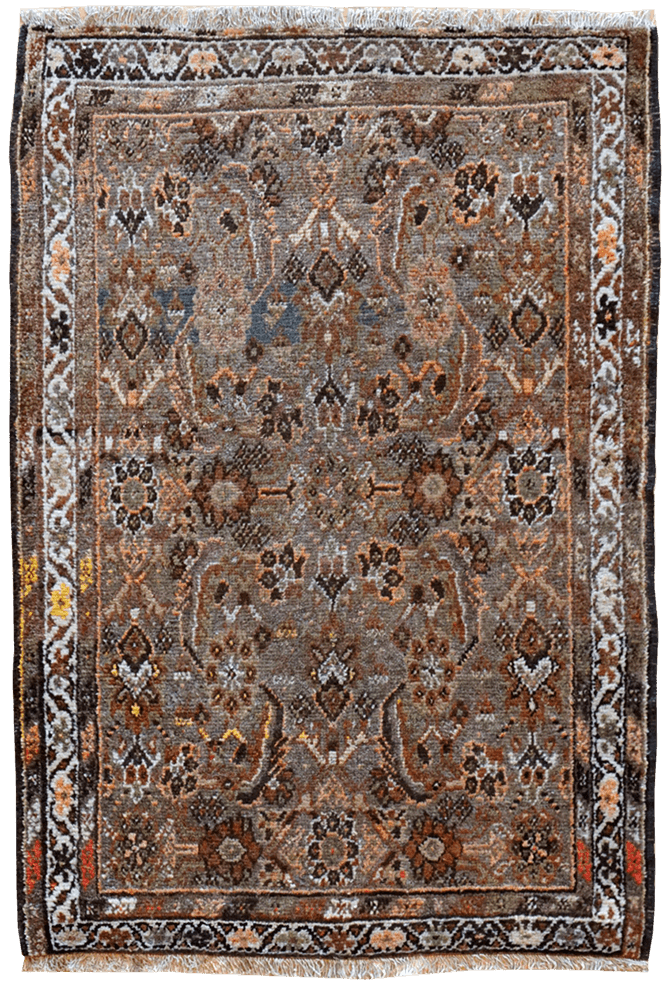Caucauses Azarbaijan Rug - Solomon's Collection & Fine Rugs