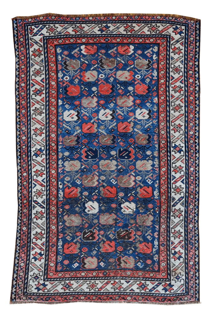 Caucauses Caucasion Rug - Solomon's Collection & Fine Rugs