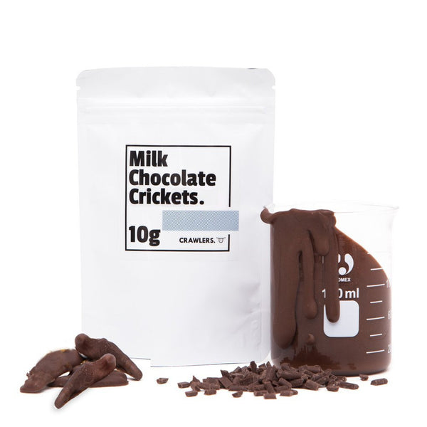 Chocolate Crickets