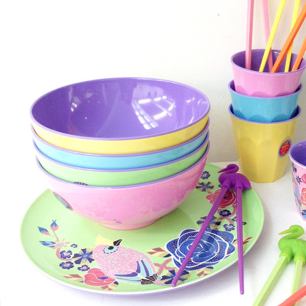 Colourful Melamine Bowl