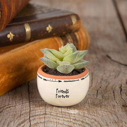 Friends Forever- mini faux pot plant