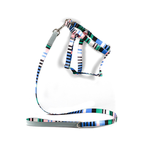 Blue Multi Color Striped Harness