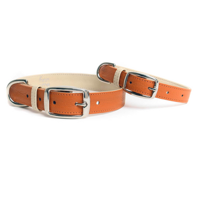 Burnt Orange Collar
