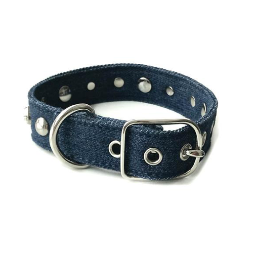 Denim & Studs Collar