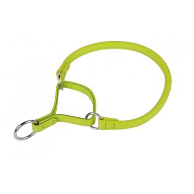 Lime Green Rolled Martingale Style Colllar