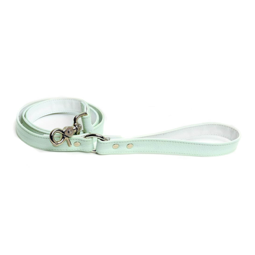 Mint Matcha Leash
